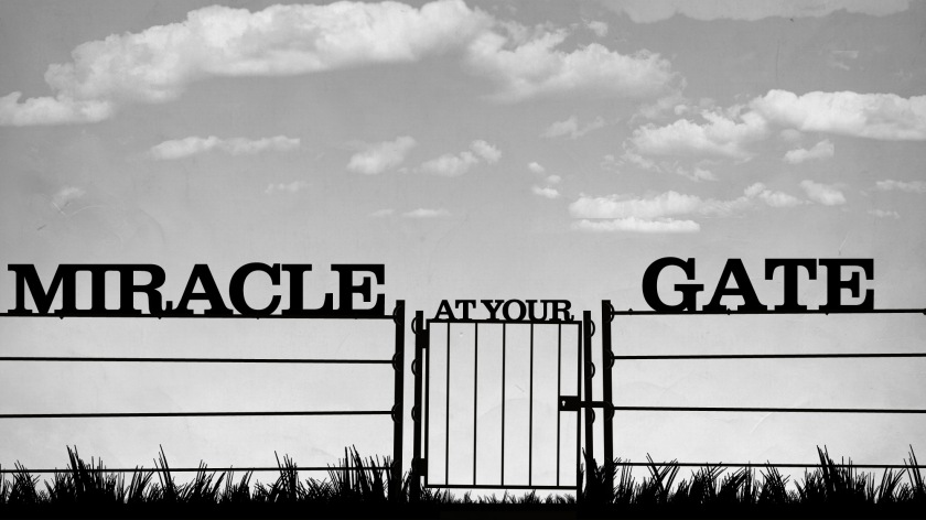 miracle at your gate_wide_t_nv