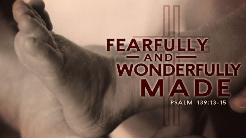fearfully and wonderfully made_wide_t