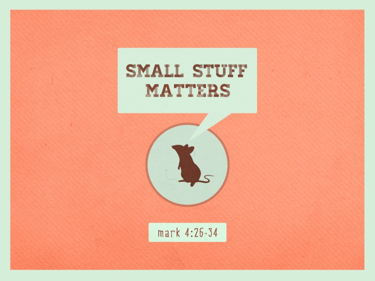 Small_Stuff_Matters_std_t