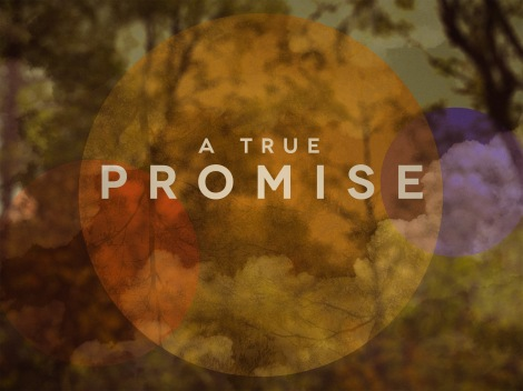 A_True_Promise_std_t_nv