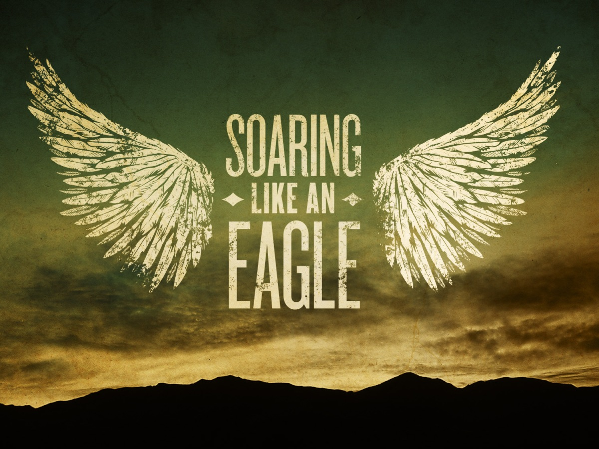 soaring like an eagle_std_t_nv